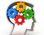 Разминка для мозга с ответами – РАЗМИНКА ДЛЯ МОЗГА. Несколько вопросиков на разные темы. — Трикки — тесты для девочек