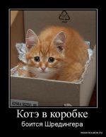 Кот шредингера википедия простыми словами – Кот Шрёдингера — Википедия