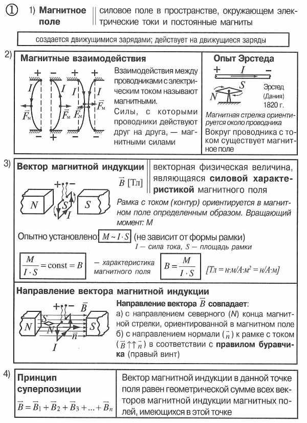 Доклад индукция магнитного поля 2983