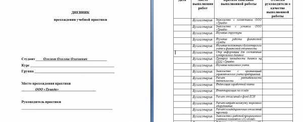 Отчет по практике в школе для управленца 5239